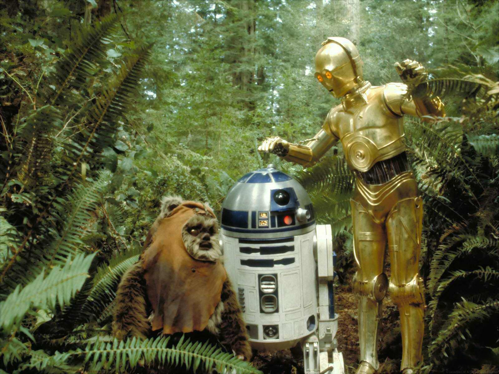 'You're even less popular than I am,  Wicket.'